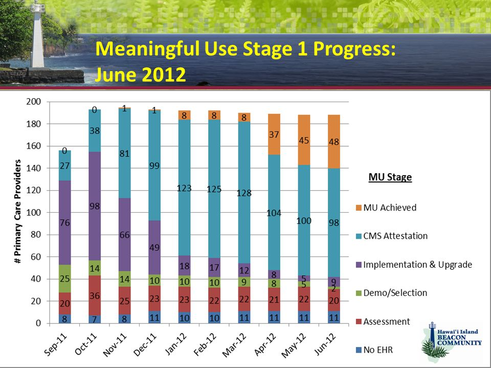 Meaningful Use Stage 1 Progress: June 2012