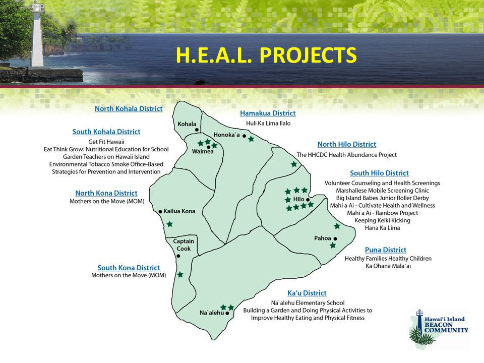 H.E.A.L. PROJECTS