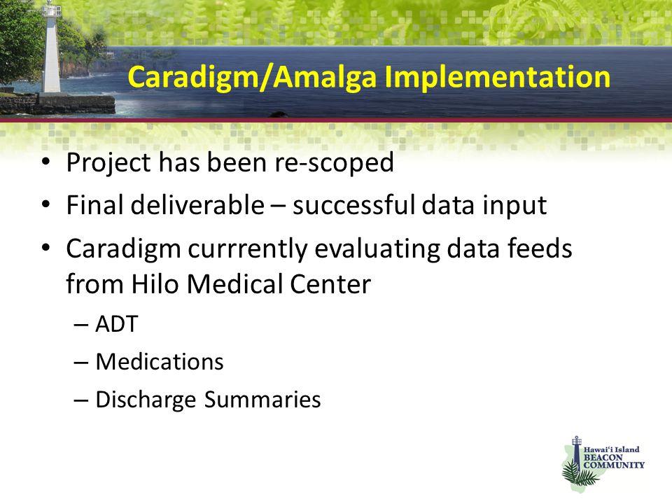 Caradigm/Amalga Implementation