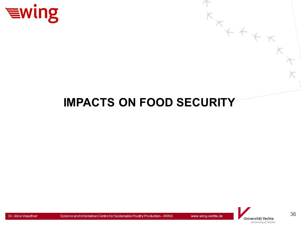 IMPACTS ON FOOD SECURITY