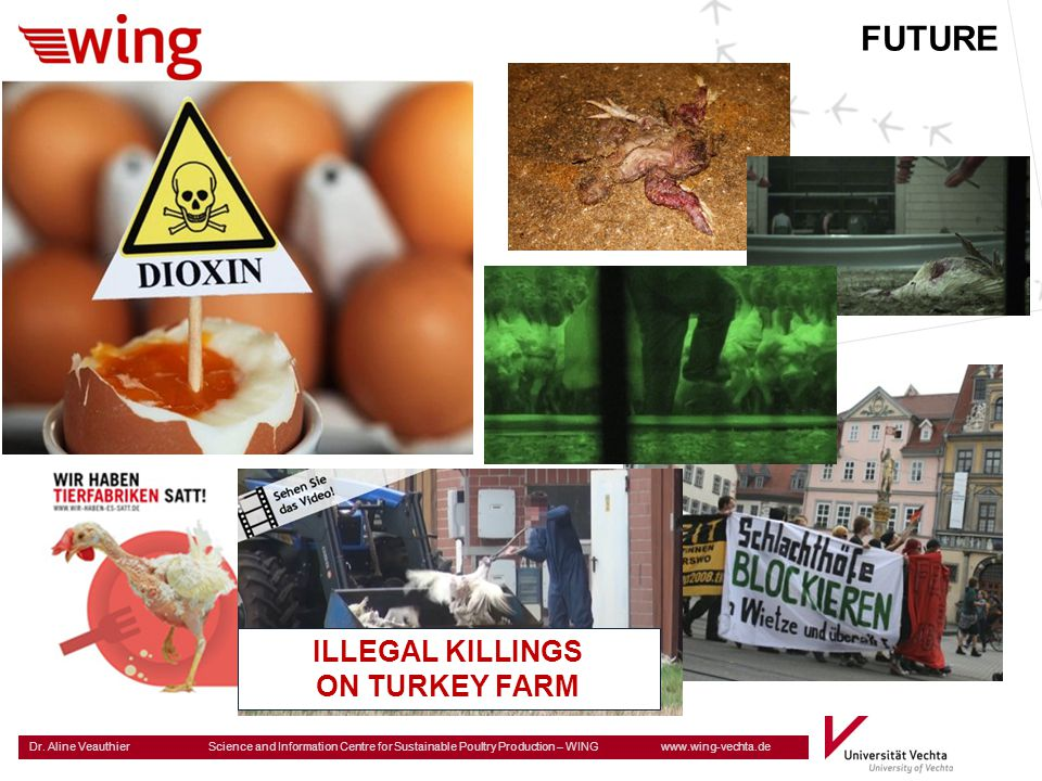 FUTURE ILLEGAL KILLINGS ON TURKEY FARM
