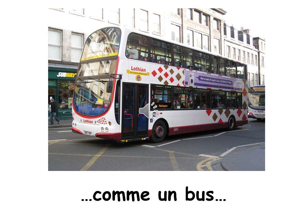 Like a bus …comme un bus…
