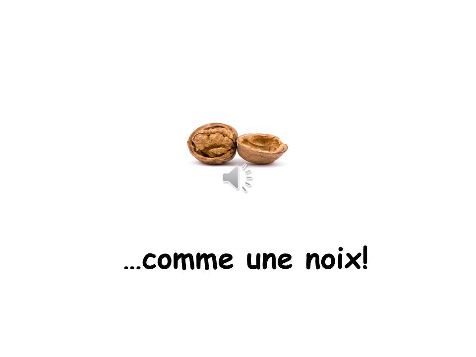 …comme une noix! Comme = like a nut