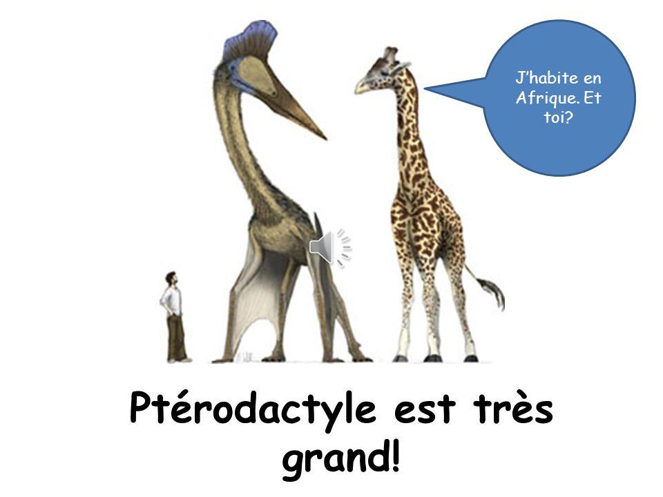 Ptérodactyle est très grand!