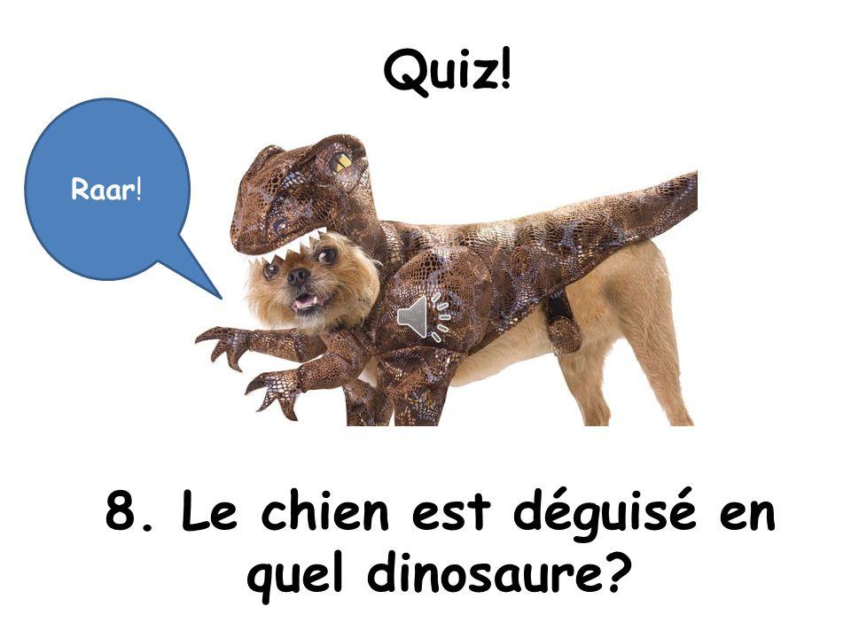 8. Le chien est déguisé en quel dinosaure