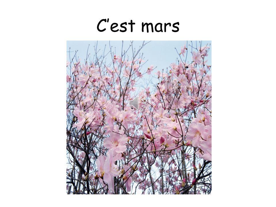 C'est mars