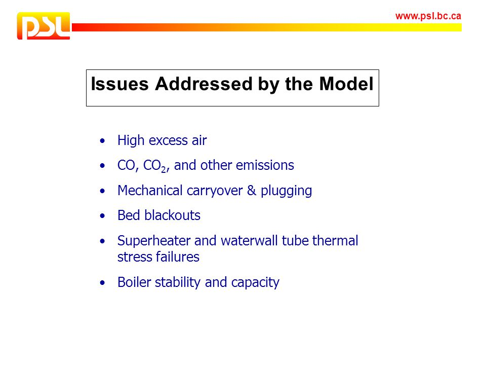 Issues Addressed by the Model