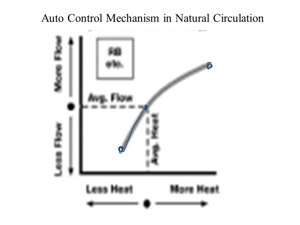 Auto Control Mechanism in Natural Circulation