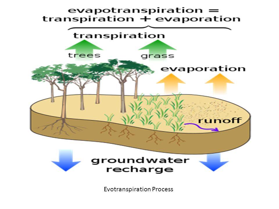 Evotranspiration Process