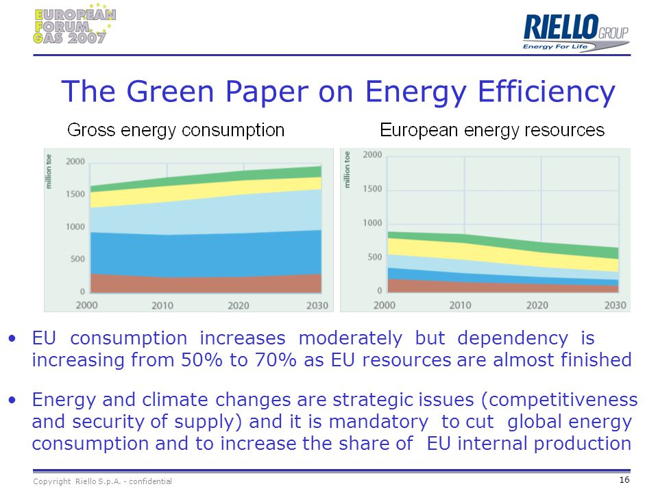 The Green Paper on Energy Efficiency