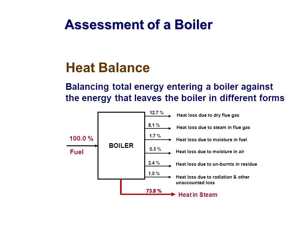 Assessment of a Boiler Heat Balance