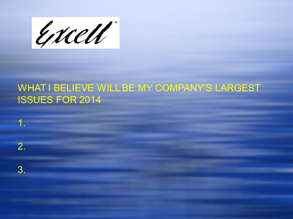 WHAT I BELIEVE WILL BE MY COMPANY'S LARGEST ISSUES FOR 2014