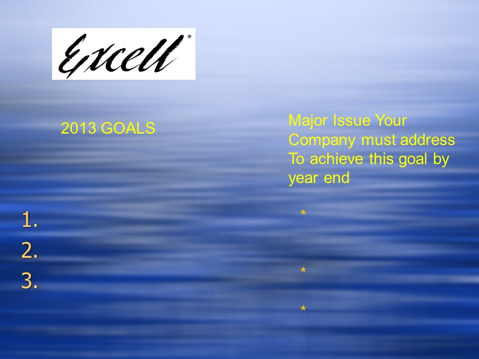 Major Issue Your Company must address To achieve this goal by year end 2013 GOALS *