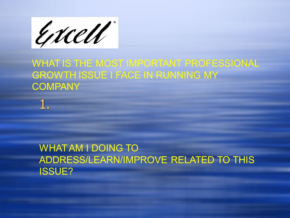 WHAT IS THE MOST IMPORTANT PROFESSIONAL GROWTH ISSUE I FACE IN RUNNING MY COMPANY