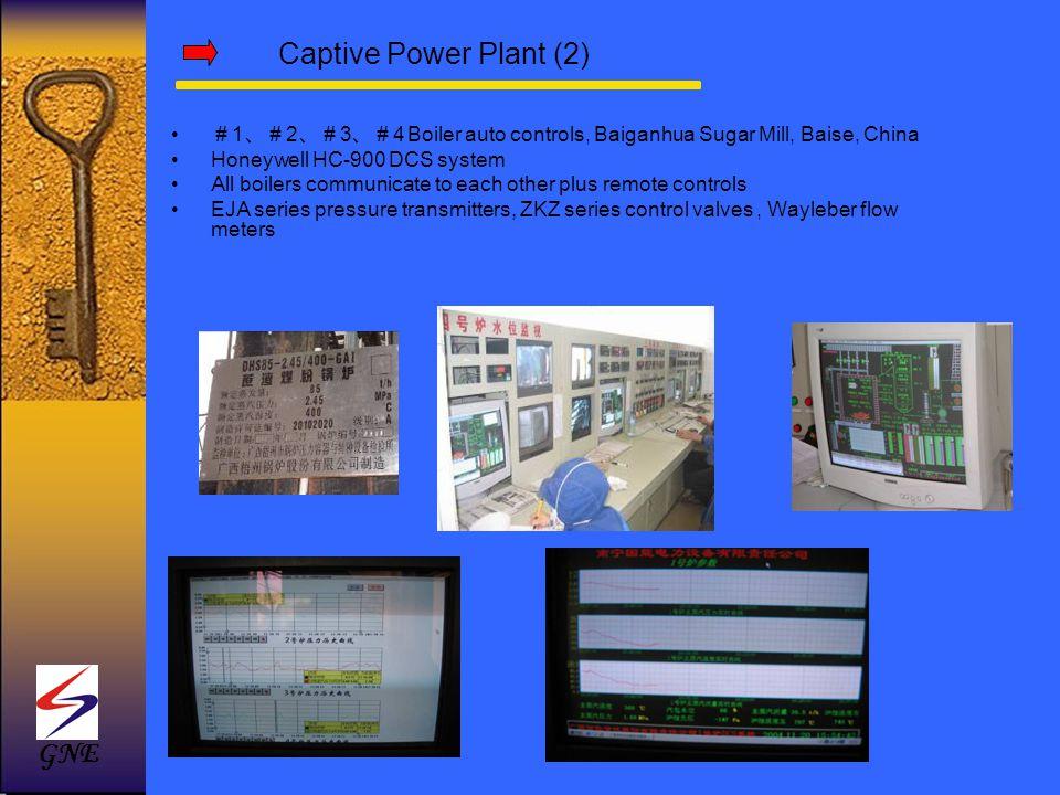 Captive Power Plant (2) GNE