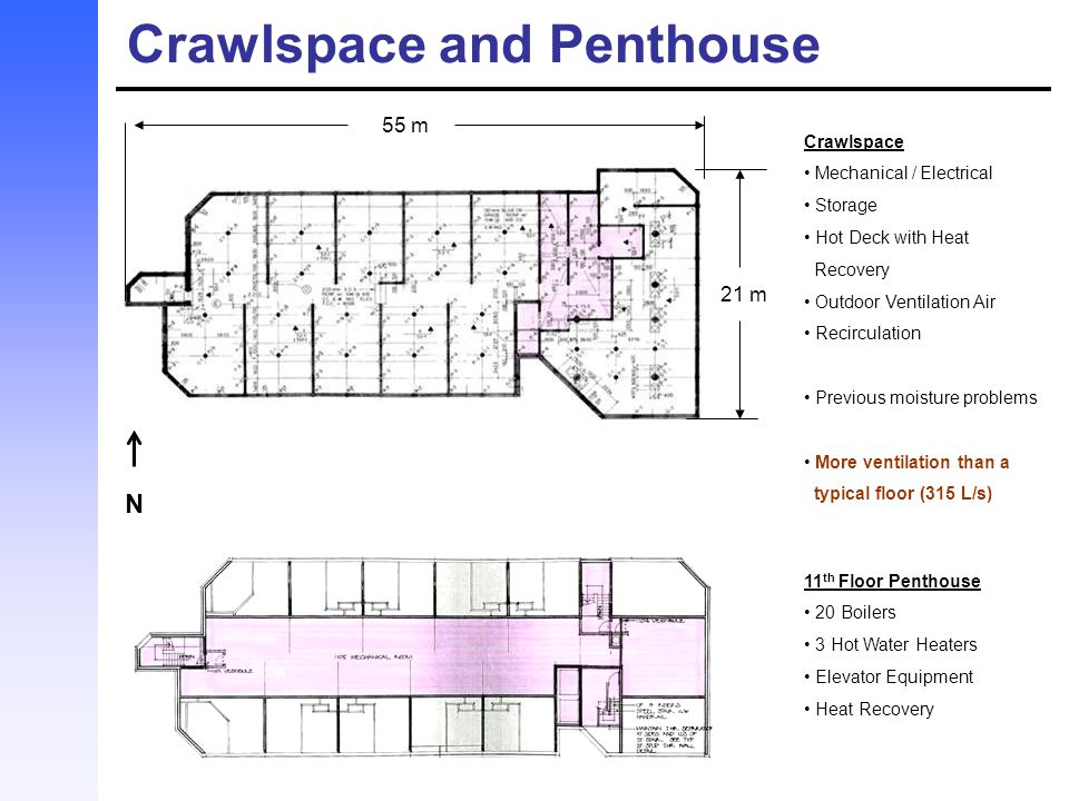 Crawlspace and Penthouse