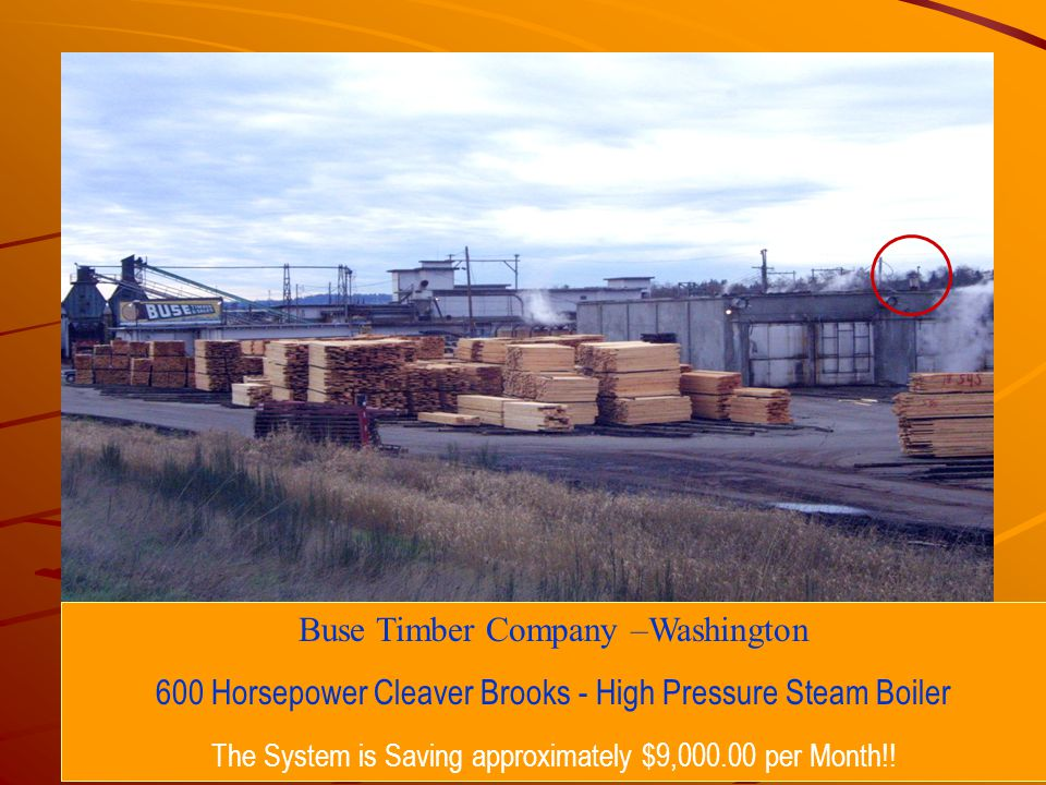 Buse Timber Company –Washington