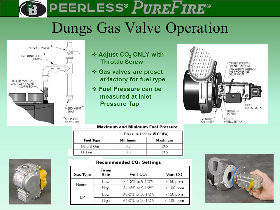 Dungs Gas Valve Operation