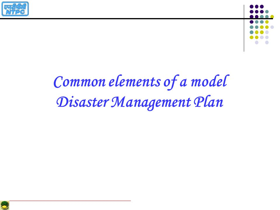 Common elements of a model Disaster Management Plan