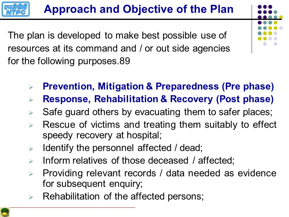 Approach and Objective of the Plan