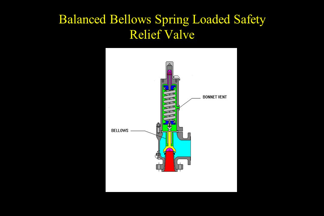 Balanced Bellows Spring Loaded Safety Relief Valve