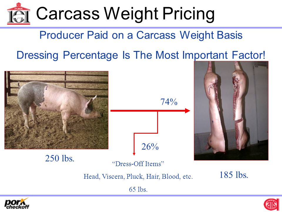 Carcass Weight Pricing