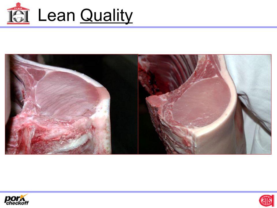 Lean Quality
