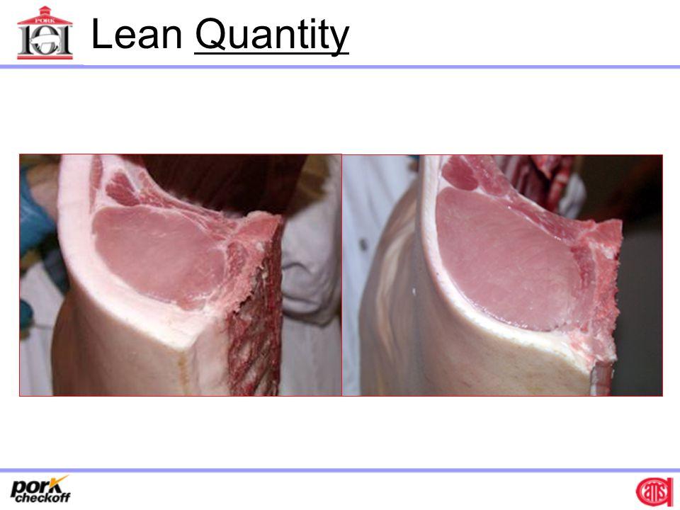 Lean Quantity