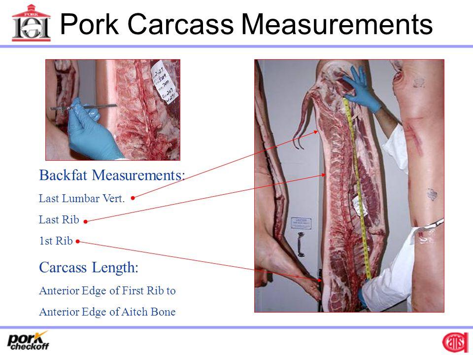 Pork Carcass Measurements
