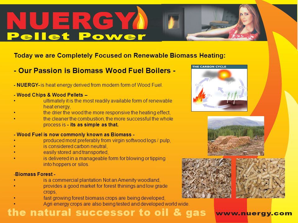 - Our Passion is Biomass Wood Fuel Boilers -
