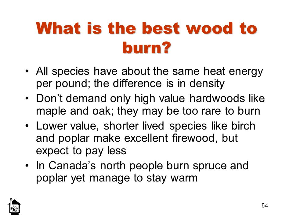 What is the best wood to burn