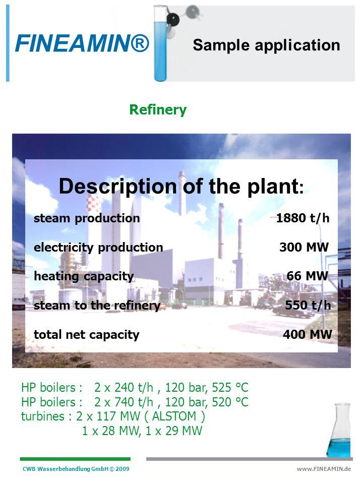 Description of the plant: