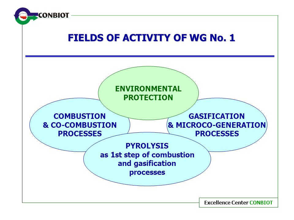 FIELDS OF ACTIVITY OF WG No. 1