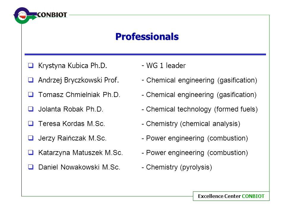 Professionals Krystyna Kubica Ph.D. - WG 1 leader
