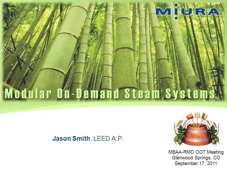 Modular On-Demand Steam Systems
