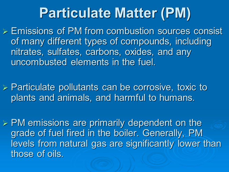 Particulate Matter (PM)