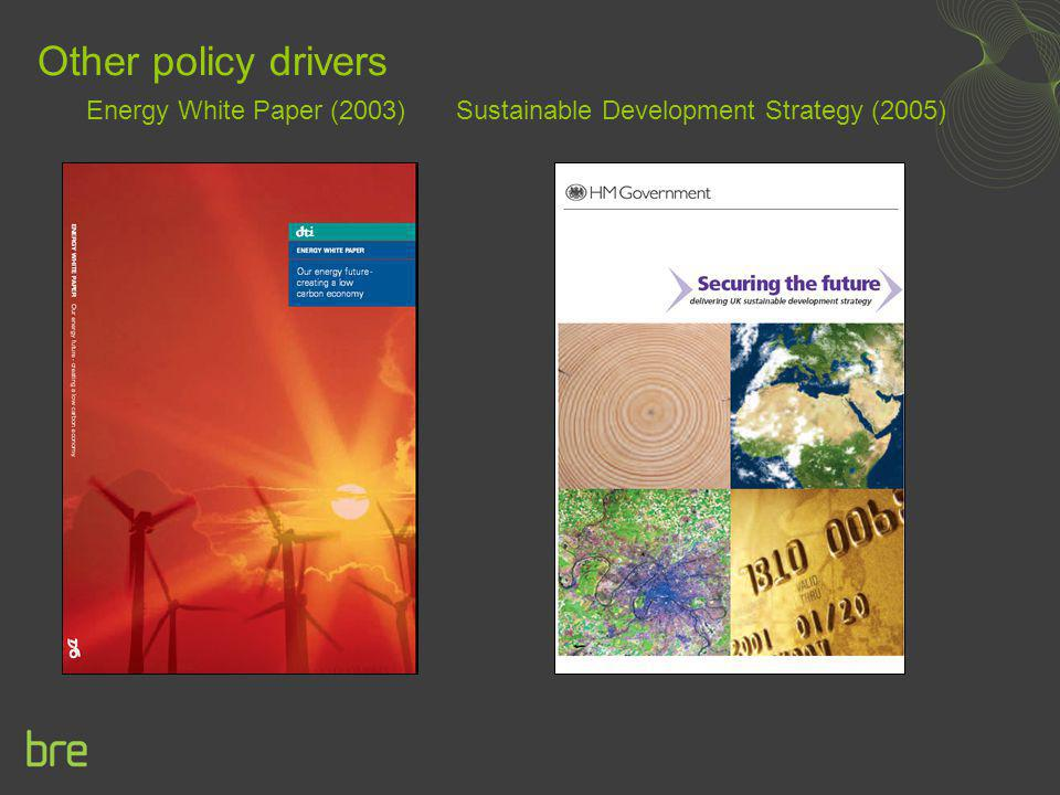 Other policy drivers Energy White Paper (2003) Sustainable Development Strategy (2005)