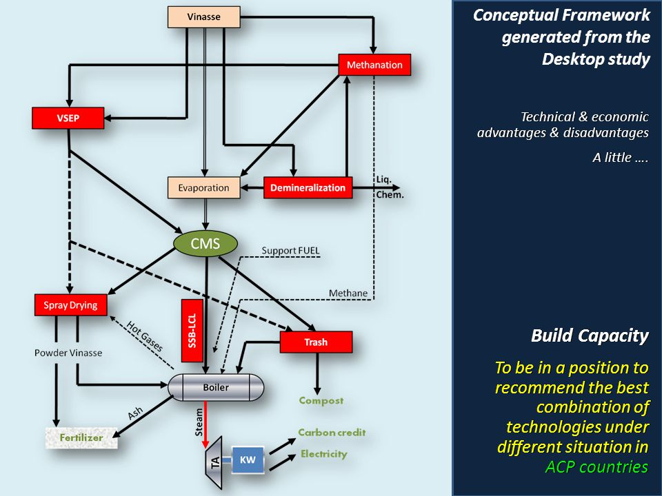 Build Capacity Conceptual Framework generated from the Desktop study