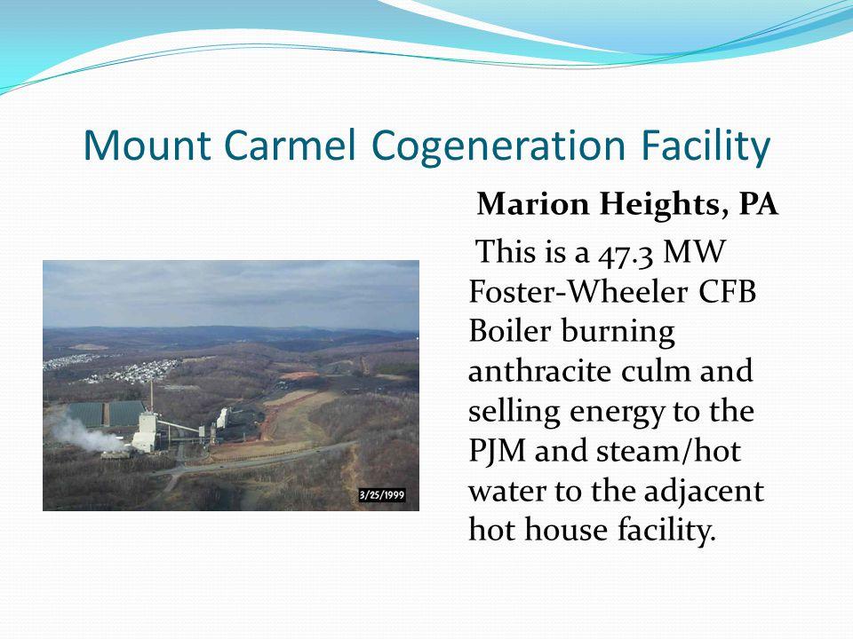 Mount Carmel Cogeneration Facility