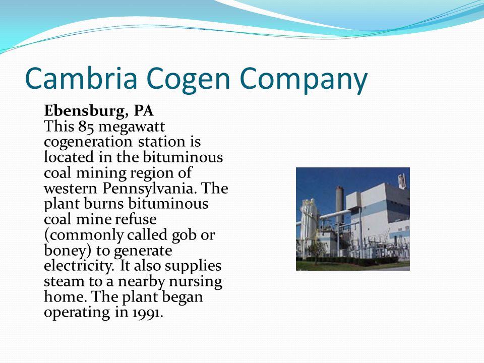 Cambria Cogen Company