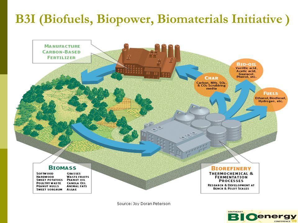B3I (Biofuels, Biopower, Biomaterials Initiative )