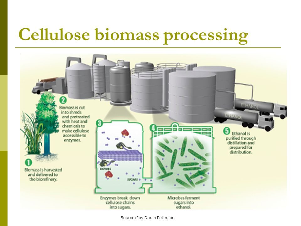 Cellulose biomass processing