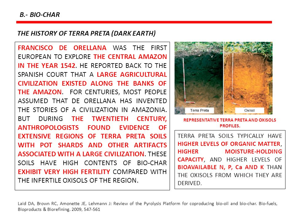 REPRESENTATIVE TERRA PRETA AND OXISOLS PROFILES.