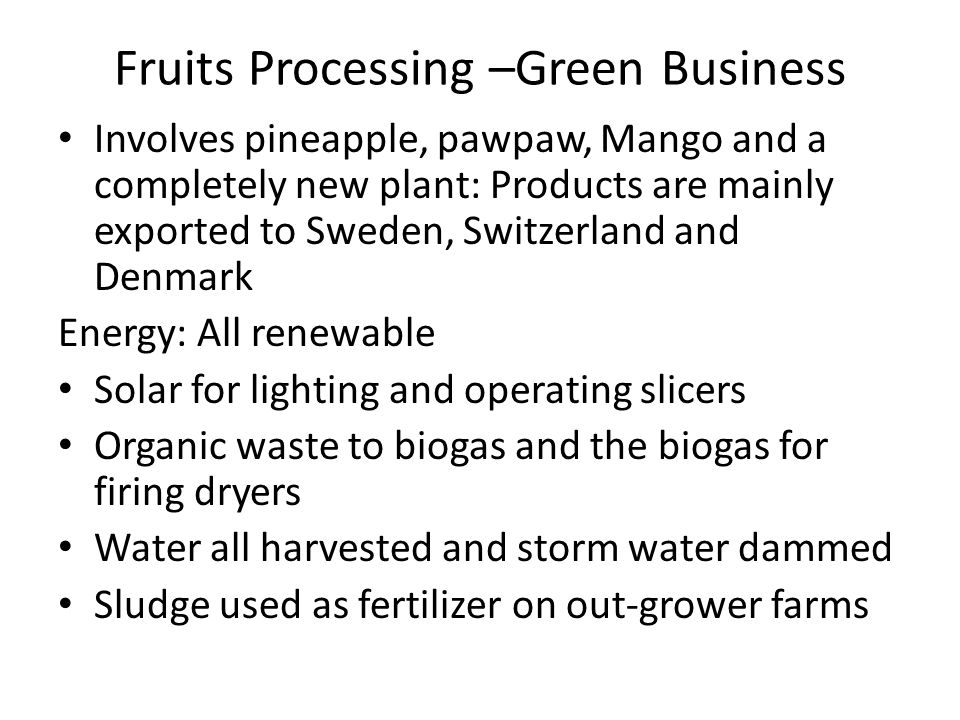 Fruits Processing –Green Business