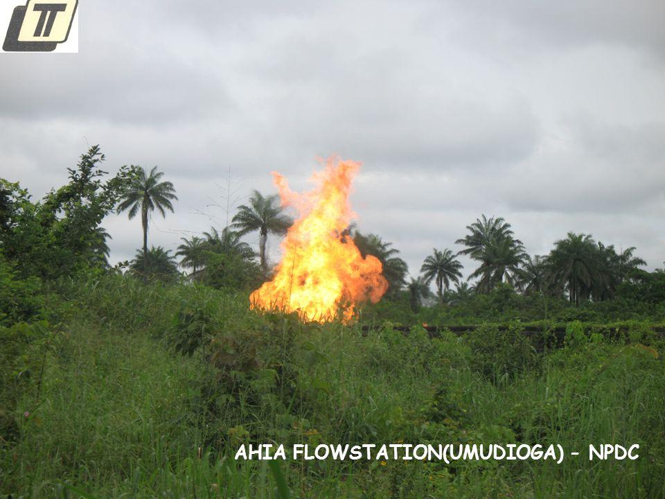 AHIA FLOWSTATION(UMUDIOGA) - NPDC