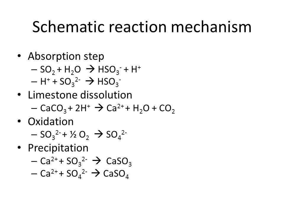Schematic reaction mechanism