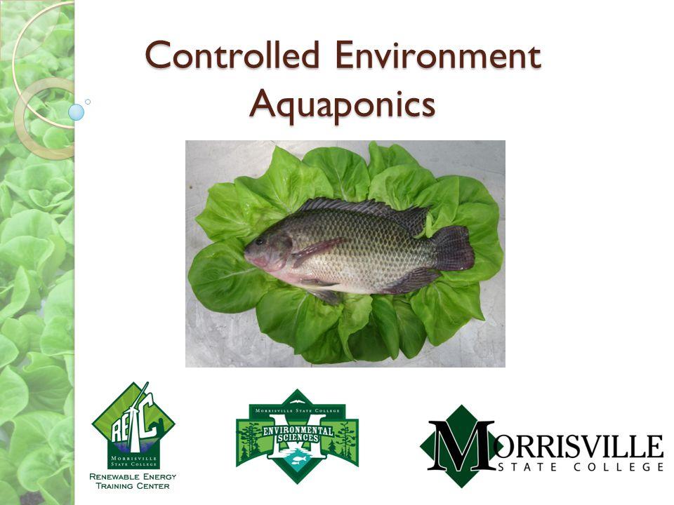 Controlled Environment Aquaponics