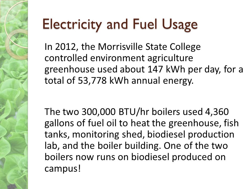 Electricity and Fuel Usage