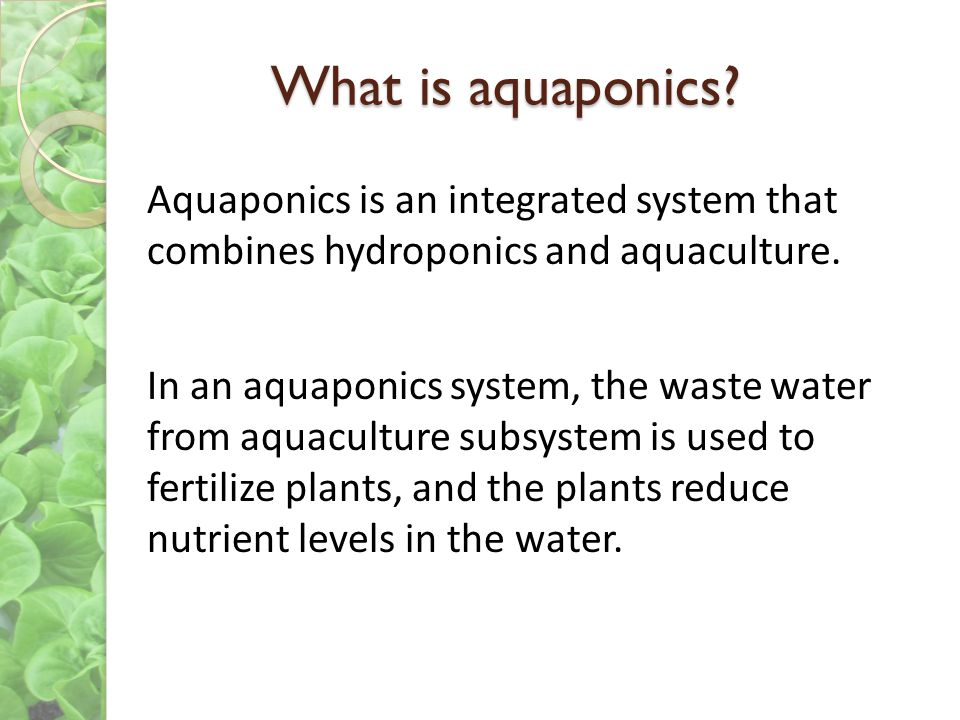 What is aquaponics Aquaponics is an integrated system that combines hydroponics and aquaculture.