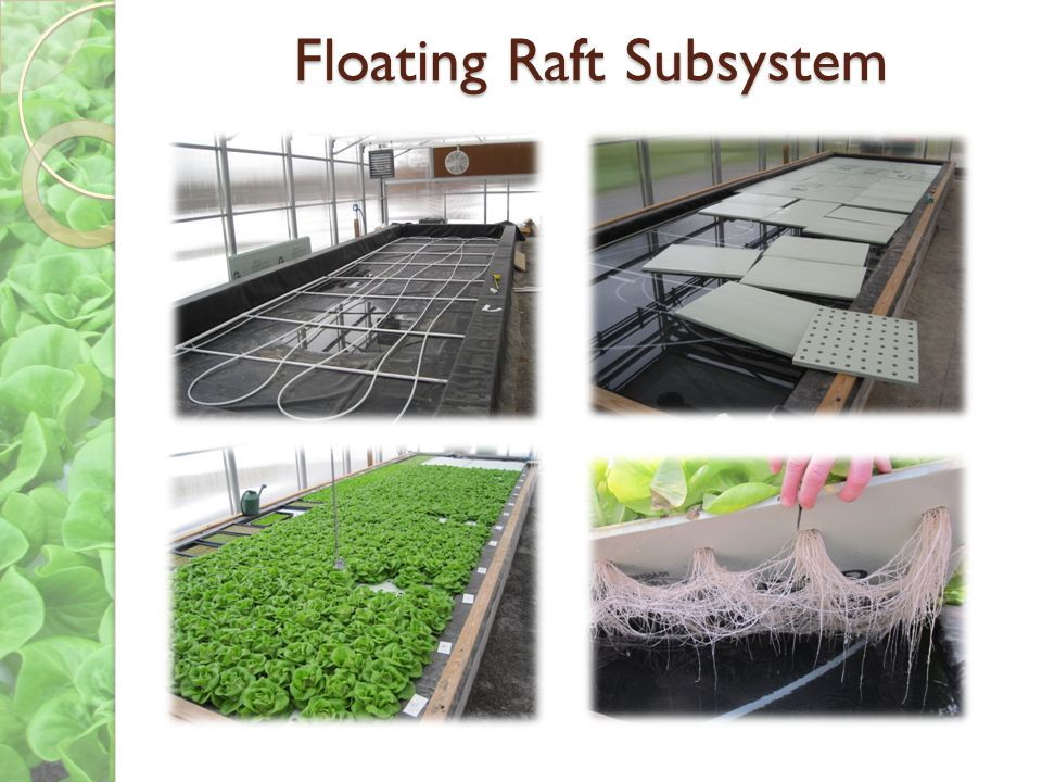 Floating Raft Subsystem
